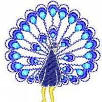 bcc-peacock