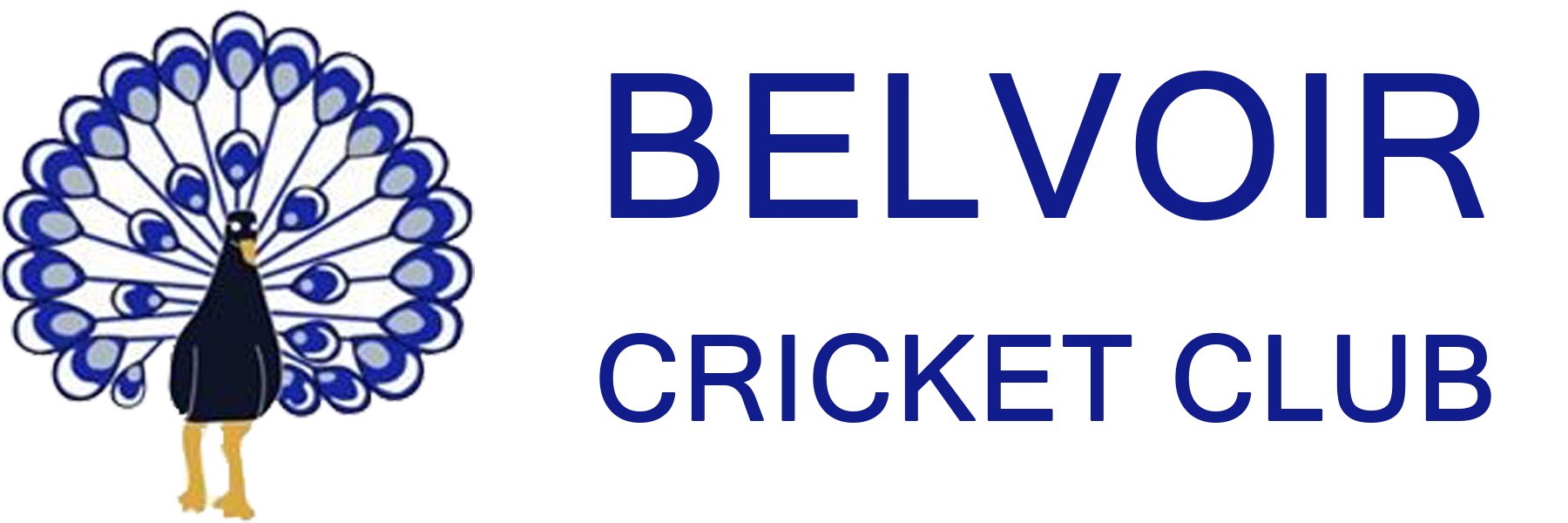 belvoircricket.club